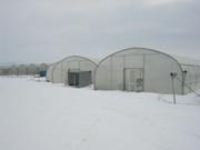 Монтаж и проектирование  пленочных фермерских теплиц