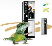 Установка,  аренда и обслуживание кофе автоматов,  кофе машин
